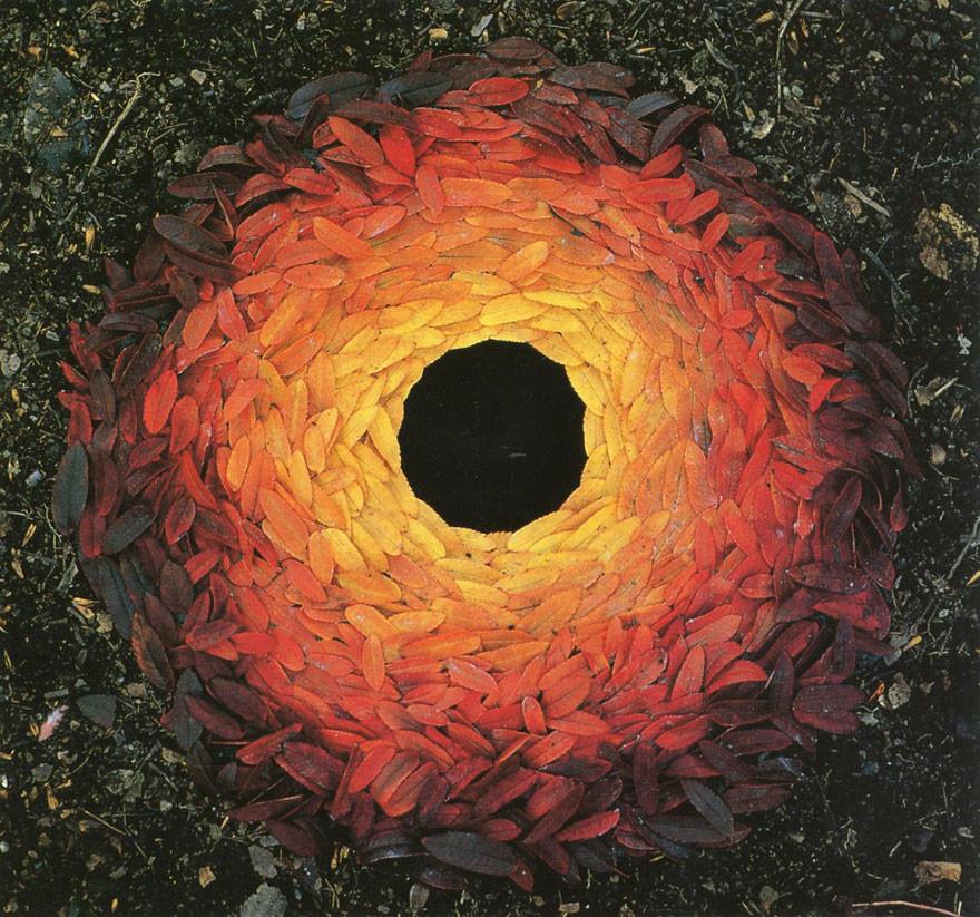 Sumach Leaves Laid Around a Hole