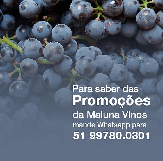Promoçoes.png