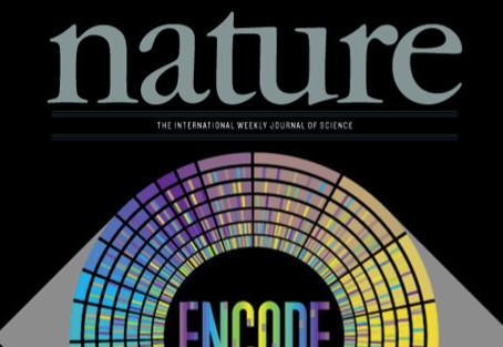 Nature: recomendaciones para trabajar con grandes bases de datos