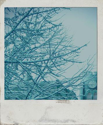 Chopin in Winter