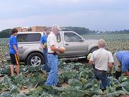 Gleaning3.jpg