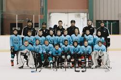 Vancouver Island Spring Hockey