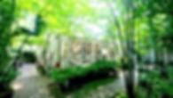 IMG_7565のコピー_edited_edited.jpg