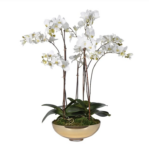 REALISTIC WHITE ORCHID IN SHALLOW GOLD BOWL