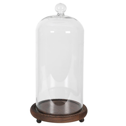 TALL GLASS BELL JAR WITH WOODEN BASE
