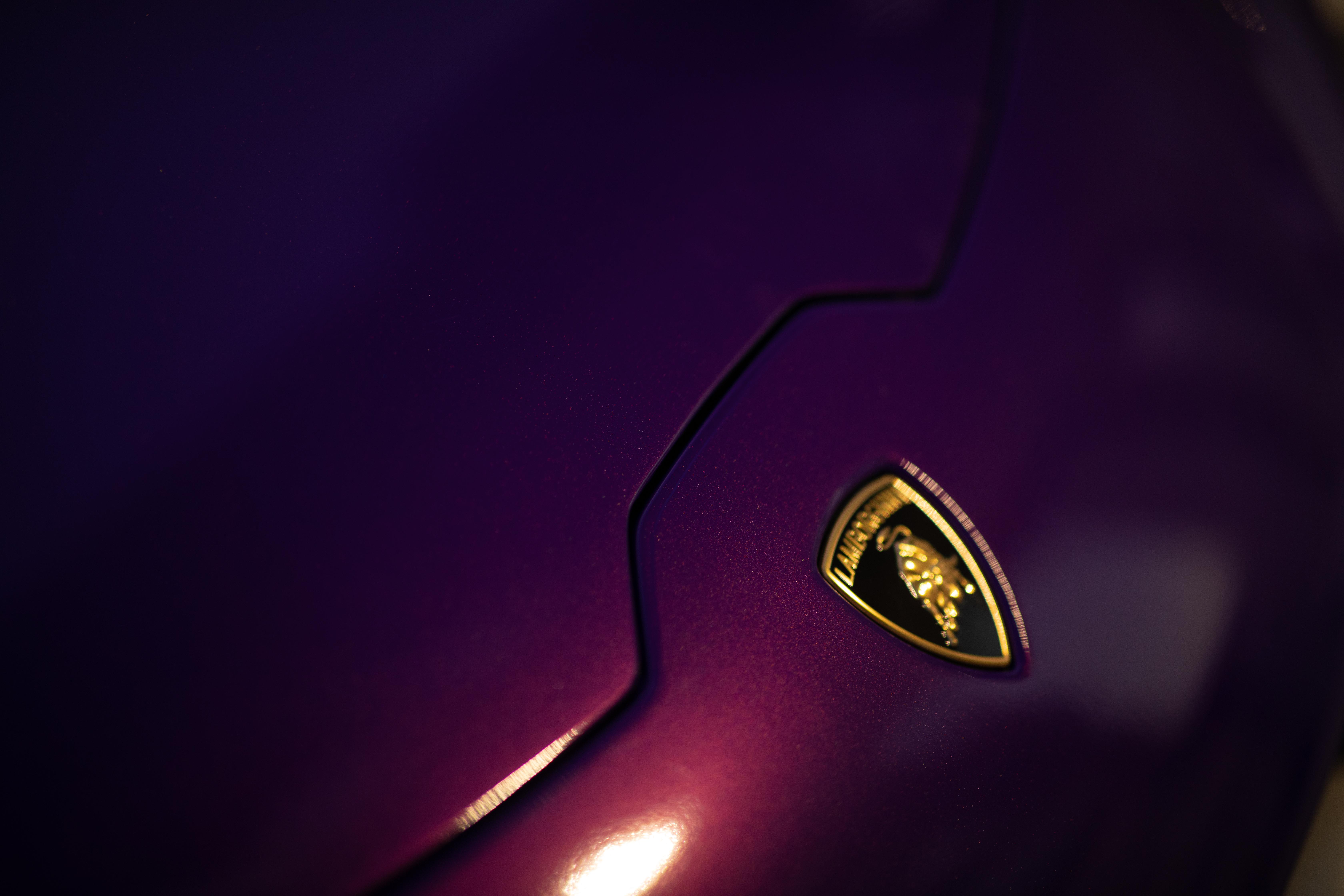 Purple Lambo