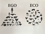 ego vs eco.JPG