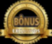 Bonus-2-300x251.png
