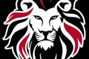 Lion on BLACK.jpg