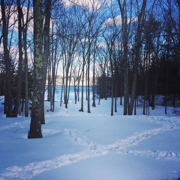 Explore in the Winter