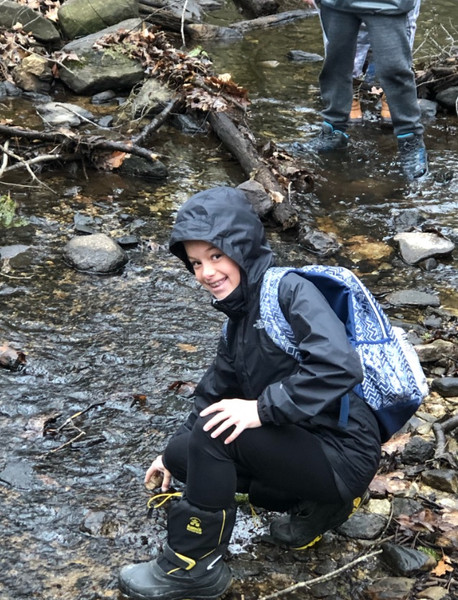 Search for Aquatic Creatures in the Stream