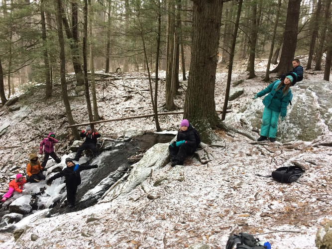 Learn About Streams at Hemlock Falls
