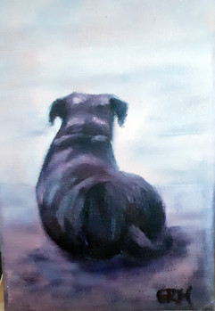 Rottie on beach 5x7 oil