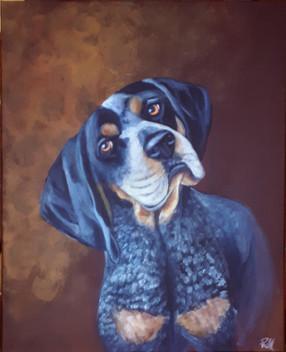 Bluetick Coonhound_Mougleigh.jpg
