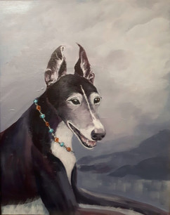 Nellie _ Greyhound