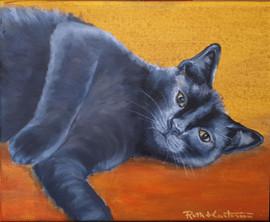 Senor 8x10 oil on canvas