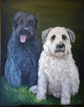 Hailey & Callie