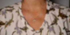 Surströmming halsband