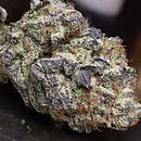 blackberry kush bud.jpg