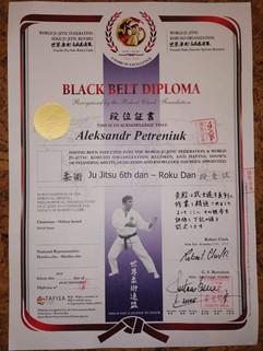сертификат джиу-джитсу 6-й дан-ts1583357