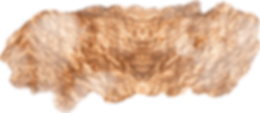 Gold brush 15.png