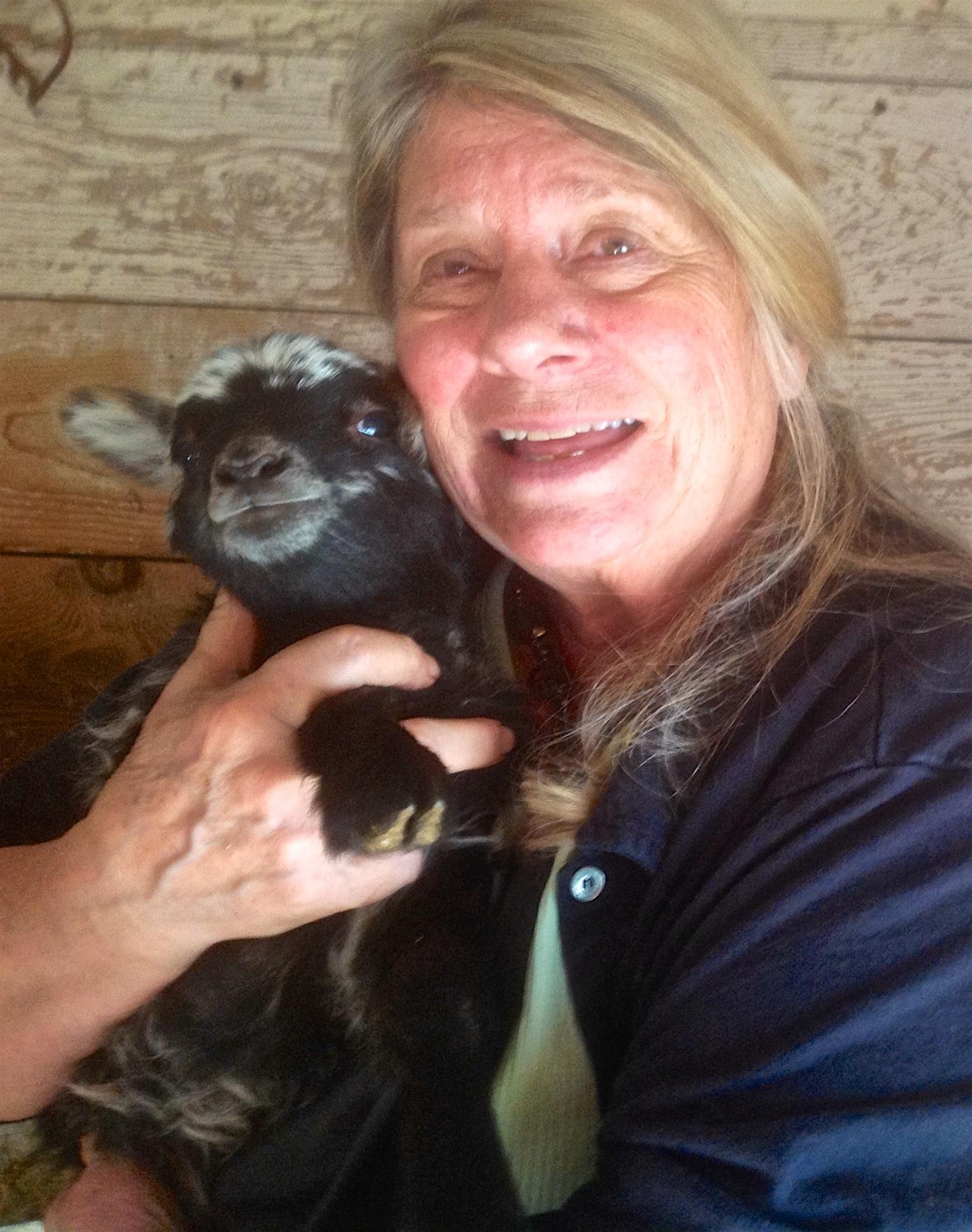 New born lamb!