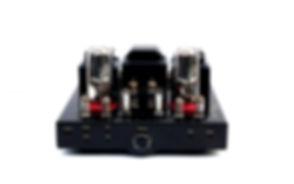 Gabris Amp.jpg