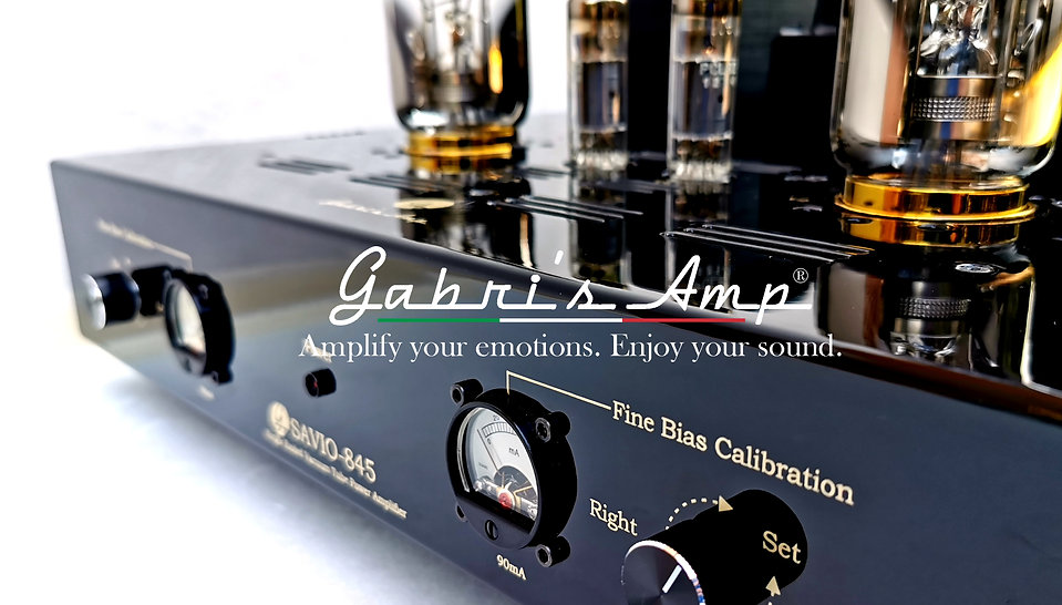 Gabris Website.jpg