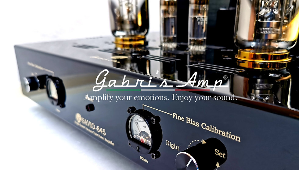 Gabris Website.jpg