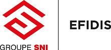 Logo EFIDIS 2016.jpg