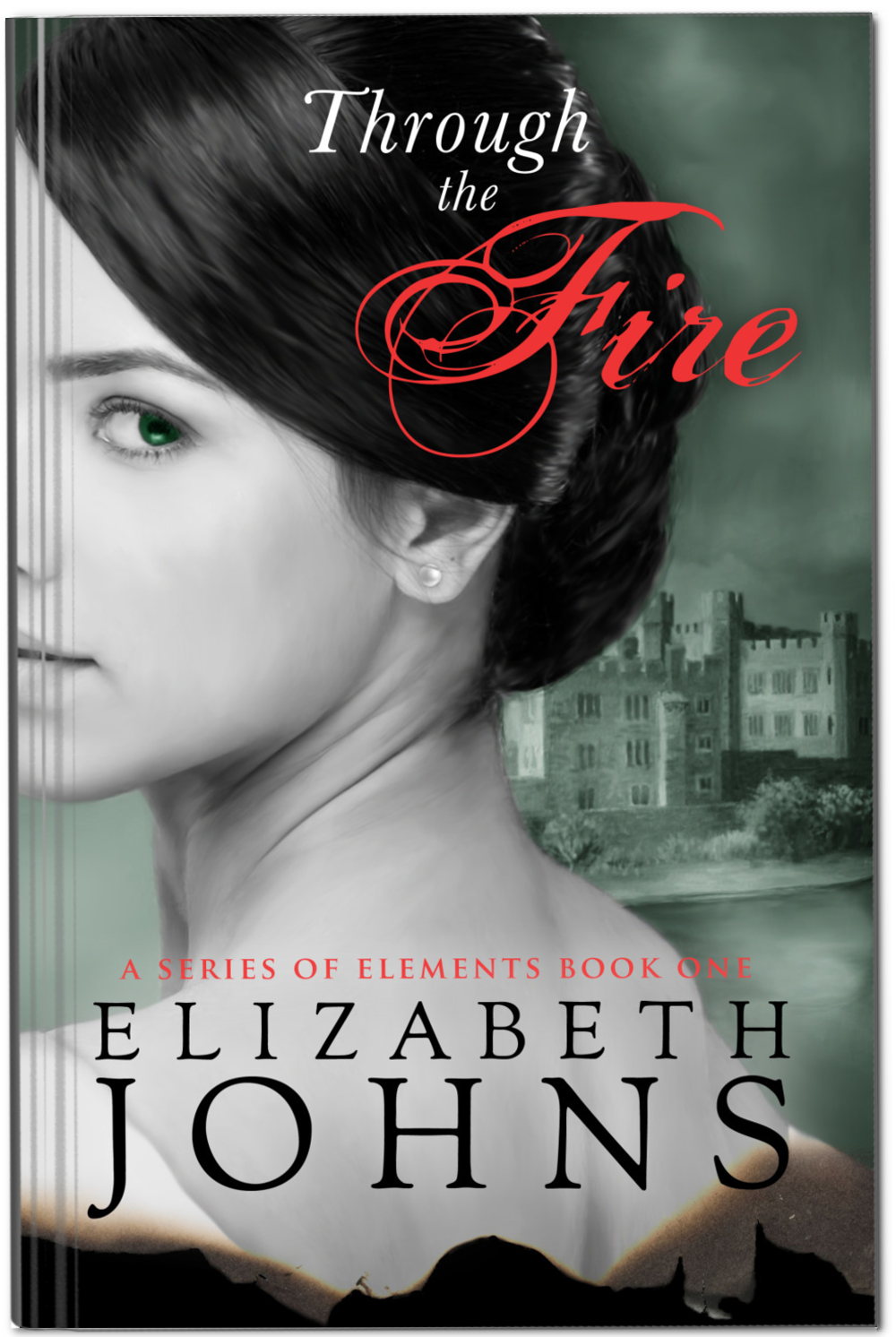 Through the Fire Paperback.png