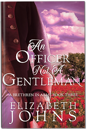 An Officer Not A Gentleman Paperback.png
