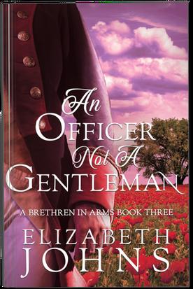 An Officer Not A Gentleman Paperback.png
