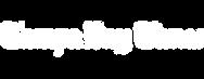 Tampa Bay Times Logo-Lynda Elle PR