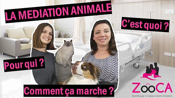 miniature La médiation animale c'est quo