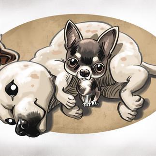 Daysy_Dogs 1.jpg
