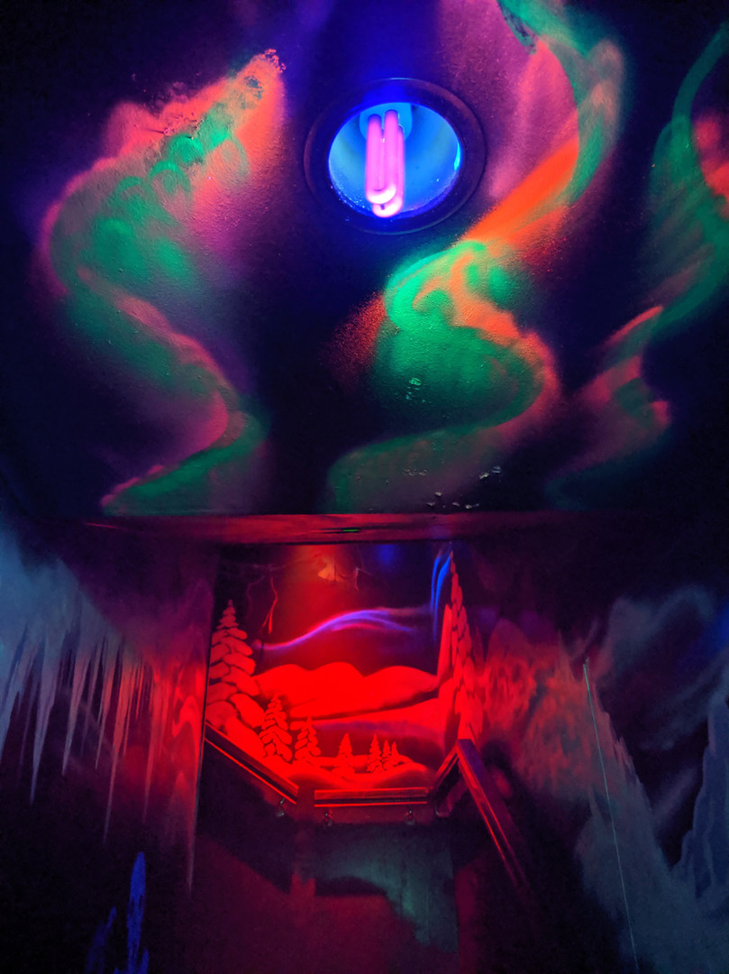 Fire and Ice Nightclub Theme Mural