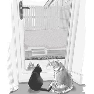Debi_Cats.jpg