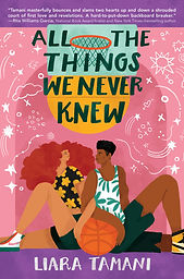 All The Things We Never Knew.jpg