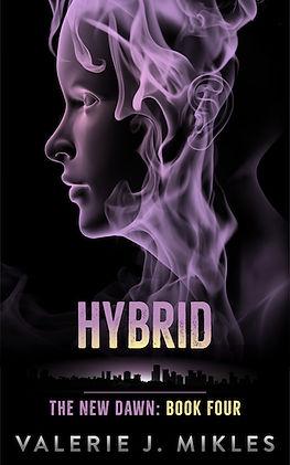 NDB4_Hybrid (1).jpg