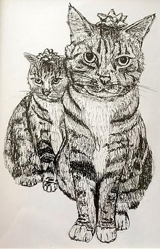 Jen's-Cats-1.jpg