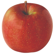 apple-fuji.png