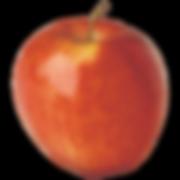 apple-gala.png