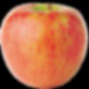 apple-honeycrisp.png