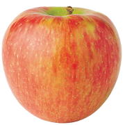 apple-honeycrisp.png