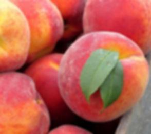 peaches red copy.jpg