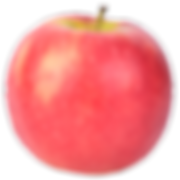 apple-pink-lady.png