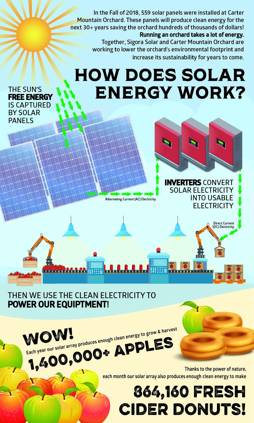 How-Does-Solar-Energy-Work-Graphic.jpg