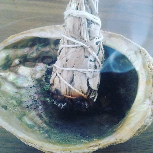 Abalone Shell -SmudgeTray