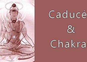 Les armatures vivantes des vaisseaux subtils : Nadis & Chakras